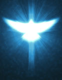 Shining dove with rays on a dark vector illustration