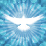 Shining dove with rays on a dark Royalty Free Stock Photos