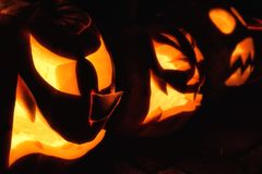 Wicked pumpkin lanterns for Halloween royalty free stock photo
