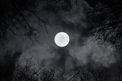 Shining full moon in the night sky and sinister night clouds -night mysterious landscape in black and white tones Royalty Free Stock Images