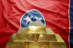 Tennessee gold reserves Royalty Free Stock Photos