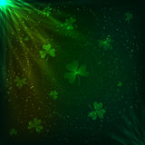 Shining green clovers magic vector background Stock Photography