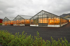 Shining greenhouse, Iceland Royalty Free Stock Images