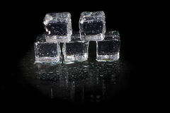 Shining ice cubes Stock Photos