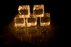 Shining ice cubes Royalty Free Stock Photo