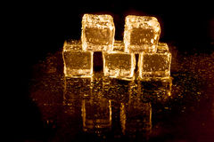 Shining ice cubes Royalty Free Stock Photos