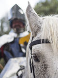 Shining knight on a horse Royalty Free Stock Photo