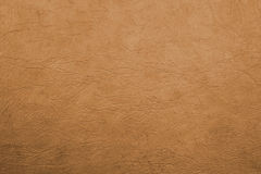 Shining leather texture Stock Images