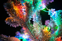 Shining lights of a natural Christmas tree covered snow. Macro Royalty Free Stock Images