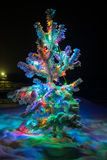 Shining lights of a natural Christmas tree covered snow. Stock Photography