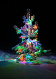 Shining lights of a natural Christmas tree covered snow. Royalty Free Stock Photos