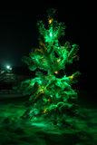 Shining lights of a natural Christmas tree covered snow. Royalty Free Stock Images