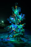 Shining lights of a natural Christmas tree covered Royalty Free Stock Images