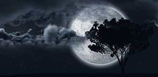 Shining moon hides by a tree and some clouds Royalty Free Stock Photo
