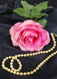 Shining pink Rose with pearls Royalty Free Stock Photography
