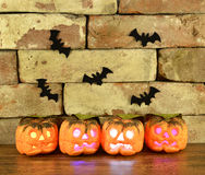 Shining pumpkins with bats Stock Photography