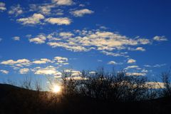 Shining sun through branches in Pyrenees,  France Royalty Free Stock Photography
