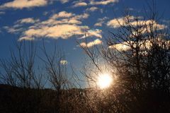 Shining sun through branches in Pyrenees,  France. Shining sun through branches in Pyrenees filmed in traveling, Aude in south of France Royalty Free Stock Images