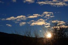 Shining sun through branches in Pyrenees,  France Stock Photos