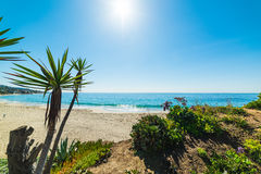 Shining sun in Laguna Beach Royalty Free Stock Images