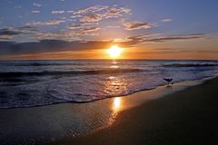 Shining Sunset Stock Photos