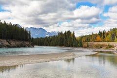 Shining surface of the lake Royalty Free Stock Image