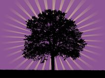 Shining tree Royalty Free Stock Image