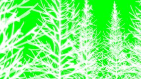 Shining tree in green screen. In green screen high quality full HD 60fps stock video