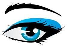 Shining woman eye. Illustration of beautiful blue shining woman eye on white background Stock Photography