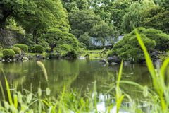 Shinji Pond in the public garden of Hibiya Park bordering the so. Uthern moat of the Imperial Palace. The word Shinji is composed of 2 ideograms which are the royalty free stock photo