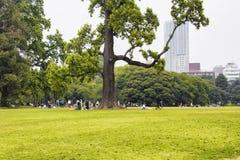 Shinjuku garden Royalty Free Stock Photography