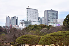 Shinjuku garden, Tokyo Stock Image