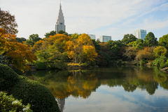 Shinjuku Gyoen Garden Royalty Free Stock Photo