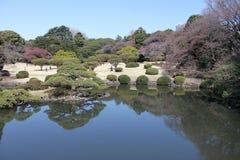 Shinjuku Gyoen medborgareträdgård - Tokyo Royaltyfri Fotografi