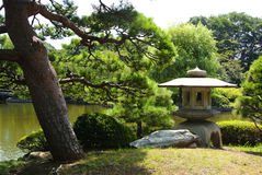 Shinjuku Gyoen National Garden Royalty Free Stock Photography