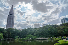Shinjuku gyoen national garden Royalty Free Stock Photos