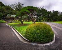 Shinjuku Gyoen National Garden in Tokyo Stock Images