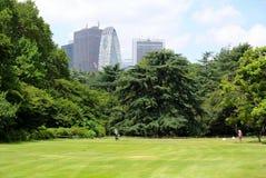 Shinjuku Gyoen National Garden Tokyo Royalty Free Stock Photo