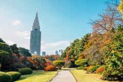 Shinjuku Gyoen park przy jesienią przy Tokio, Japonia obrazy stock