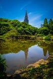 Shinjuku Gyoen trädgård Royaltyfri Bild