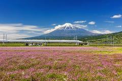 Shinkansen bullet train with Mt. Fuji. SHIZUOKA JAPAN - MAY 05 2017: Shinkansen or JR Bullet train running pass through Mt. Fuji and Shibazakura at spring with Stock Photography