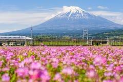 Shinkansen train at mount Fuji, Shizuoka. Shizuoka, Japan - May 05, 2017: JR Shinkansen moving through Mountain Fujisan and Shibazakura at spring. N700 Bullet royalty free stock photography