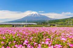 Shinkansen und Auto laufen gelassen durch Mt fuji Lizenzfreie Stockfotografie