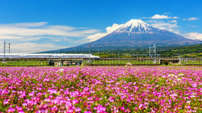Shinkanzen or Bullet train with Mt. Fuji Royalty Free Stock Images