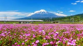 Shinkanzen with Mt. Fuji view Stock Photo