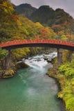 Shinkyo-Brücke in Nikko, Japan im Herbst Stockbilder