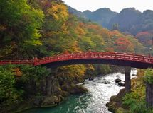 Shinkyo Bridge during Autumn in Nikko, Tochigi, Japan. Royalty Free Stock Images