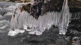 Shinning icicles. Frozen drops above winter stream created beautiful icicles.  Glittering ice above foamy winter brook.Fallen tree stock video footage