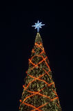 Shinny Christmas Tree Stock Photography