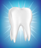 Shinny tooth on blue background Royalty Free Stock Photography